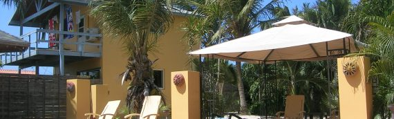 Vakantie Appartement Aruba Colibri