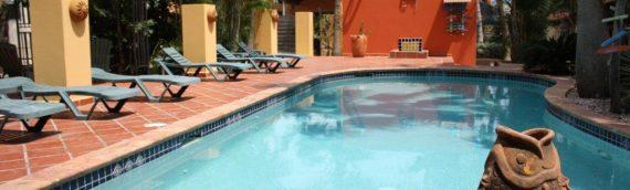 Vakantie Appartement Aruba Suikerdief